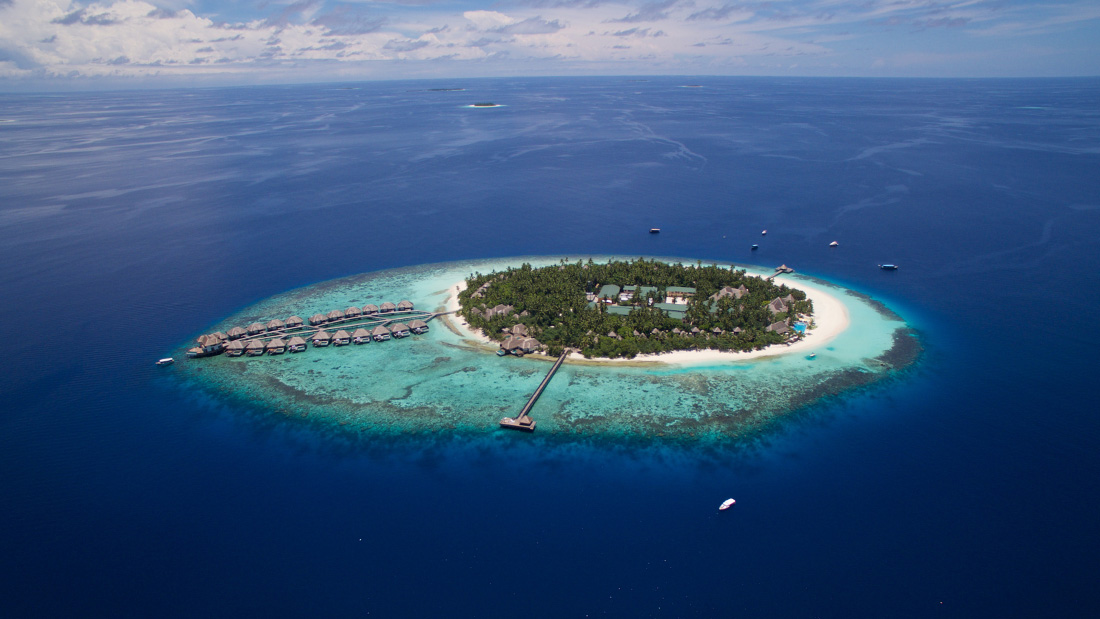 Best Dives Maldives